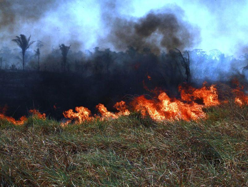 Rondonia 22 08 2019 O Governo de Rondônia lança, nesta sexta-feira (23), a Operação Jequitibá de prevenção e combate aos focos de calor e incêndios no Estado, com ações integradas entre o Corpo de Bombeiros, Instituto Chico Mendes (ICMBio), Secretaria de Estado do Desenvolvimento Ambiental (Sedam) Foto Esio Mendes