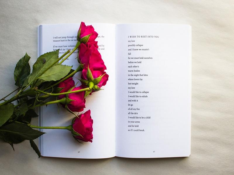 livros de poesia